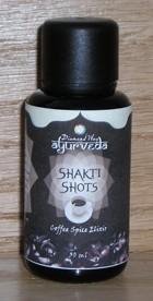 ShaktiSMALL3.jpg
